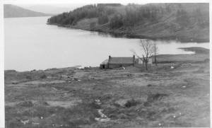 mccooksrearview1954